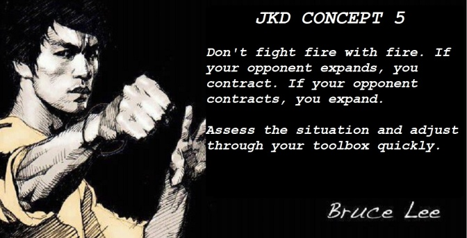 Bruce Lee #5